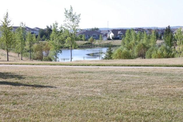 Crystalridge Link Park #okotoks