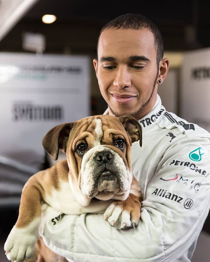 Lewis Hamilton Mercedes AMG with his dog Roscoe