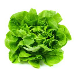 There are different kinds of lettuce types cultivated across the globe, which are used in salads, hamburger, sandwiches, tacos, etc. This article provides information on the different types of lettuce.