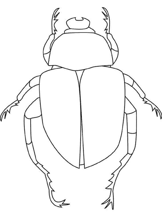 scarabee4.gif (567×756)