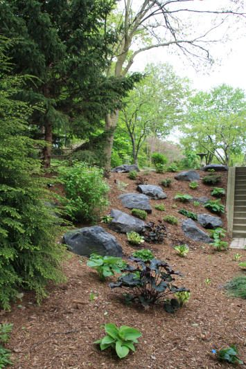 13 best images about natural rockery on pinterest home for Professional landscaping