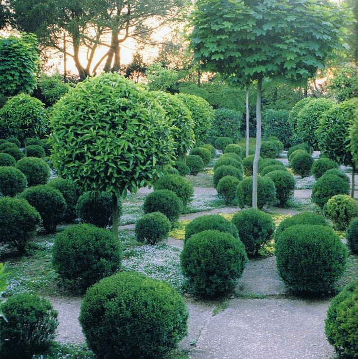 The Gardens of Russel Page