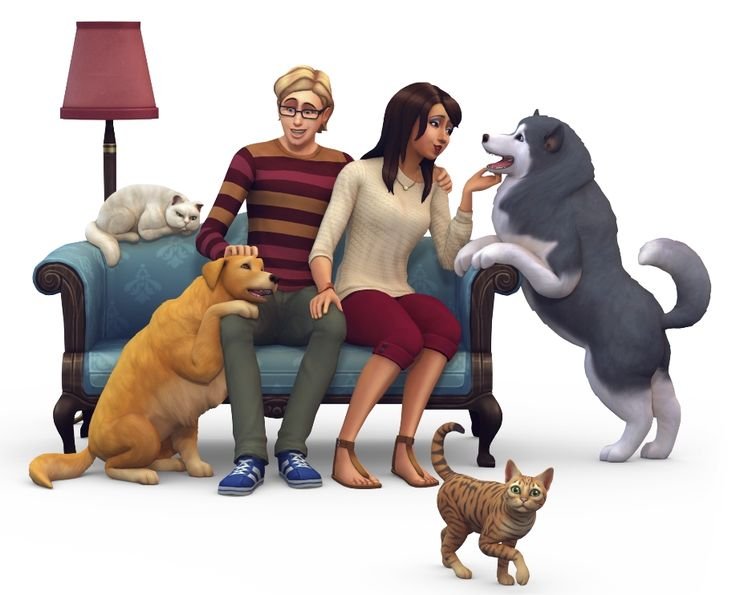 Sims  Pets Take Cat To The Vet