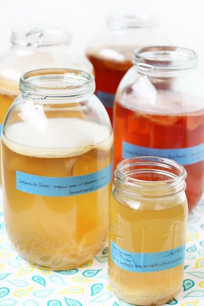 Ferment your own kombucha! Easy to follow how-to instructions.