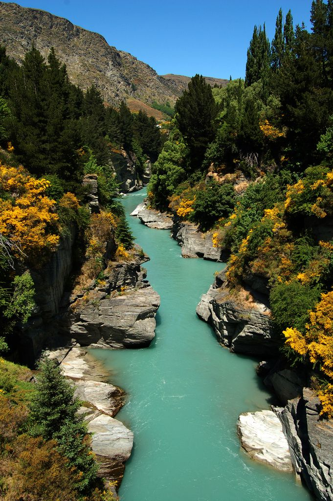 Shotover River, Queenstown | New Zealand This is often labeled as Fairy Pools in Scotland. It is usually photoshopped with purple foliage.