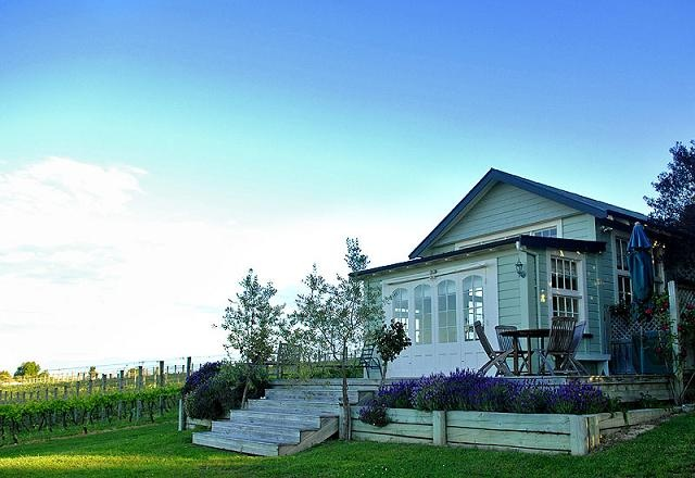 The Vineyard Cottage at Kina Beach Vineyard is the most romantic retreat! http://www.kinabeach.co.nz/