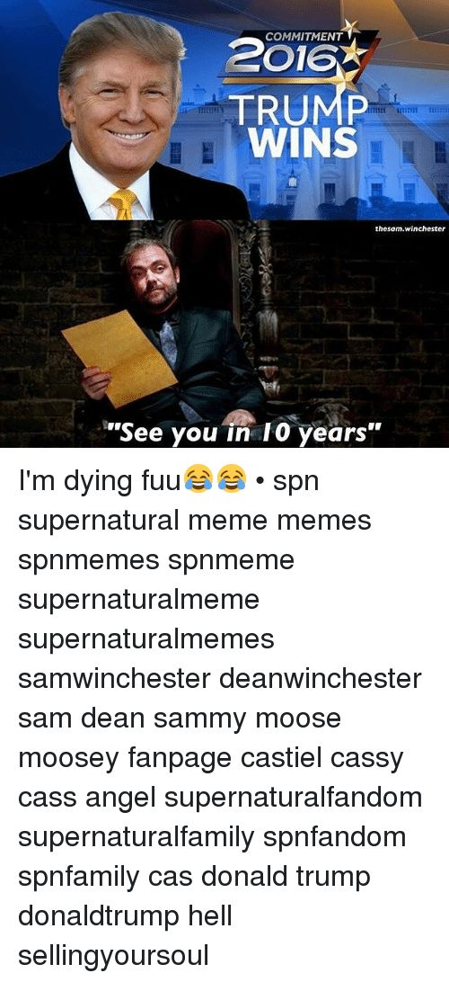 Image result for supernatural memes <--- only explanation i can think of (that doesn't kill my faith in humanity)