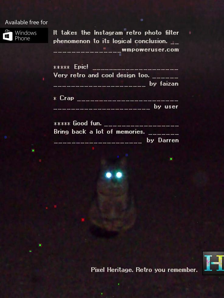 Kot sfotografowany przy użyciu aplikacji Pixel Heritage.