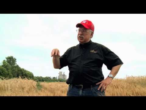 """""""10,000 years of Sustainability"""" shows University of Nebraska wheat breeder and professor Stephen Baenziger explaining the benefits of wheat and how important it is to the world."""