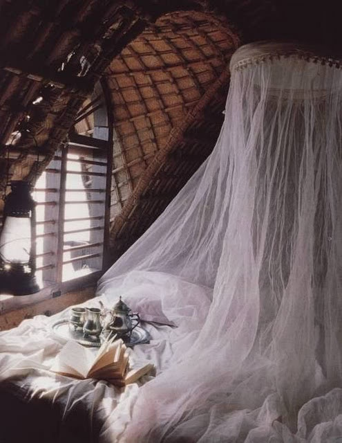 Cozy Bedroom With Mosquito Netting Canopy Over Bed
