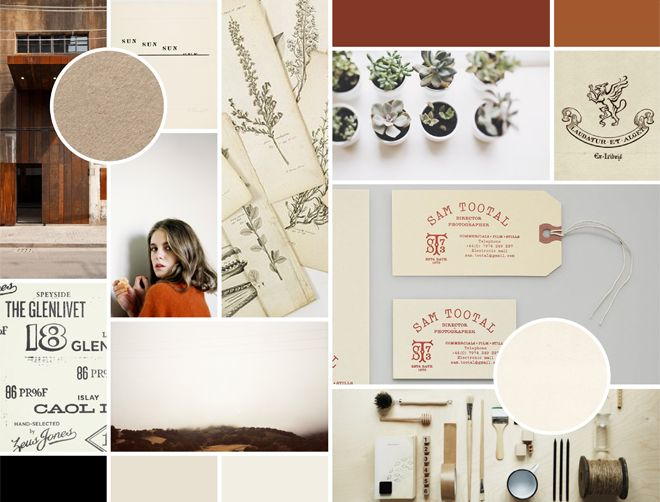 mood board for warbler records and goods rebrand by jessica comingore.