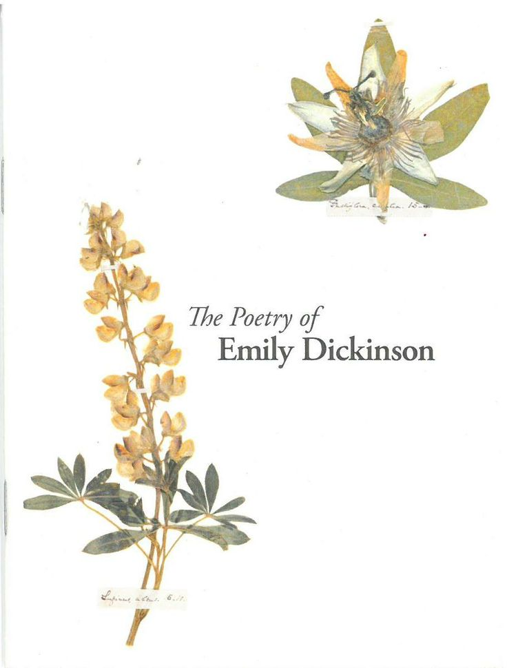 the unique characteristics of emily dickinsons works About emily dickinson's poems the texts of dickinson's poems and letters  but one never fails to sense and remember her unique poetic genius her stanza forms.