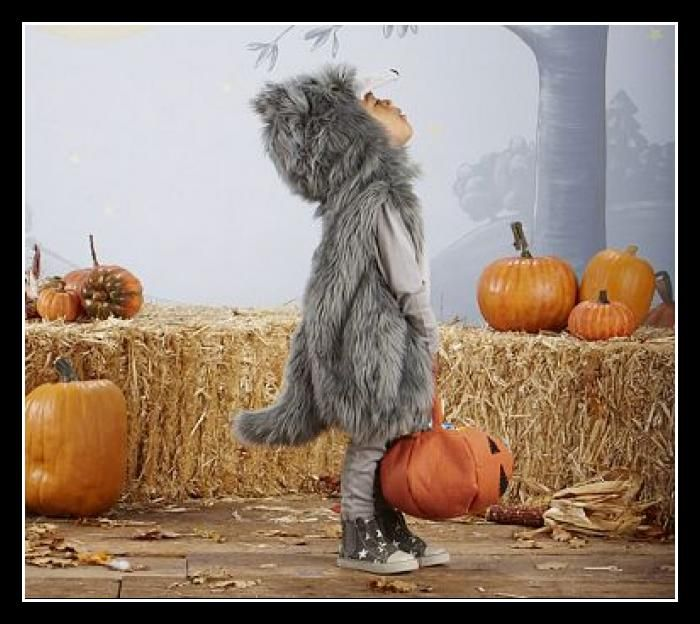 Little Wolf Costume for Kids gray   color  fur halloween costume with hay stacks and pumpkins, little baby werewolf werewolves,   looking up at moon,  March  2015
