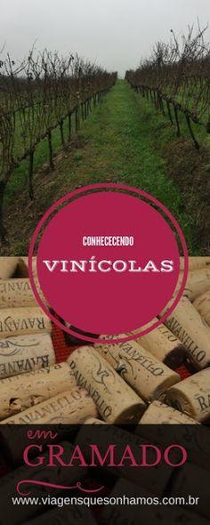 Vinícolas para Visitar em Gramado Conhecendo a Vinícola Ravanello e Vinícola Jolimont