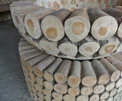 Schale, Teakholzstämme - www.mangold-interieur.com