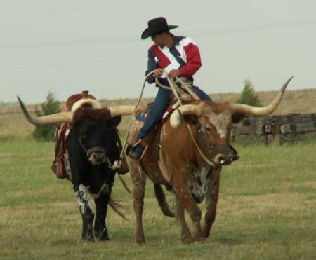 I so want to break a longhorn steer to ride! It's on the bucket list!