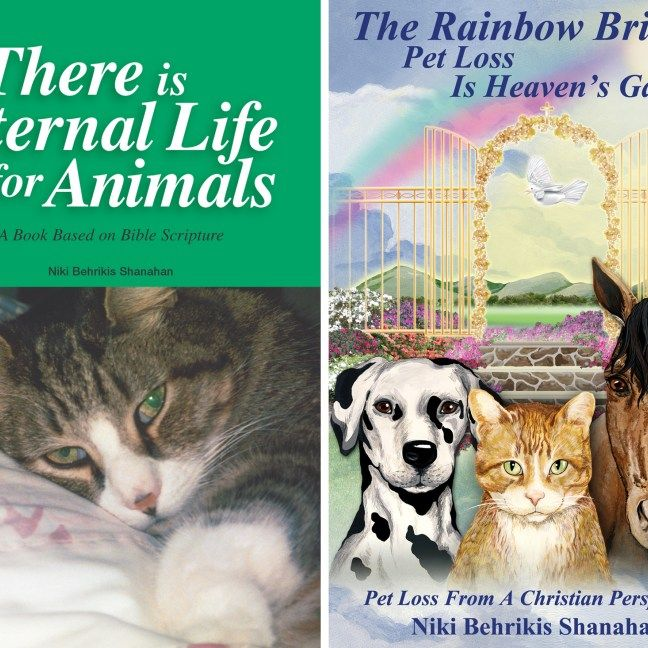 1 Copy Of Each The Rainbow Bridge Pet Loss Is Heaven S Gain And There Is Eternal Life For Animals Price Includes Free Media Shipping To Us Only Pet Loss Pets Rainbow Bridge
