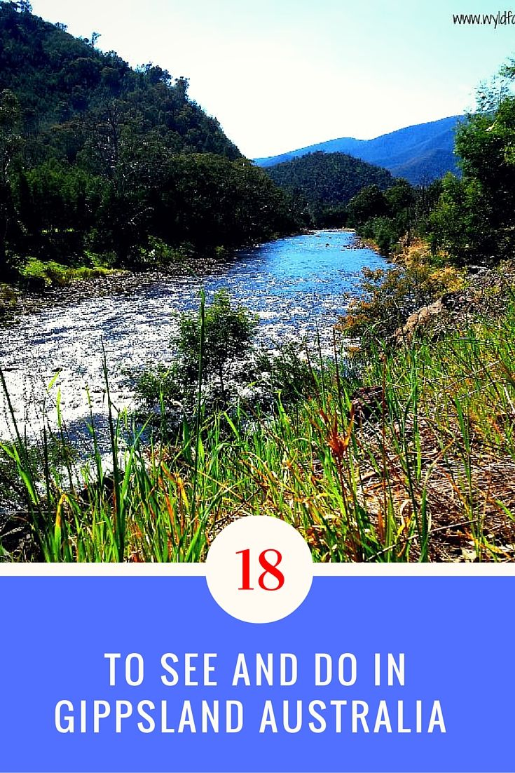 Gippsland is east of Melbourne Australia. Gippsland is the biggest region in Victoria. Natural wilderness, national parks, coastal reserves, lakes and so much more. Visit our 18 things to do and see in Gippsland