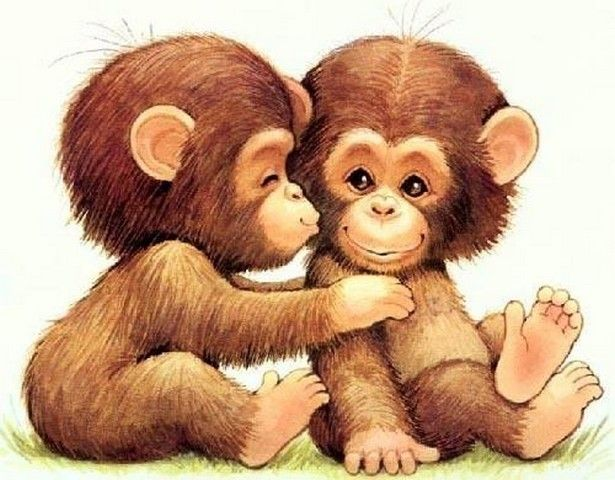 Gambar Kartun Monyet Lucu Dan Unik Monkey Drawing Cartoon Animals Pet Birds