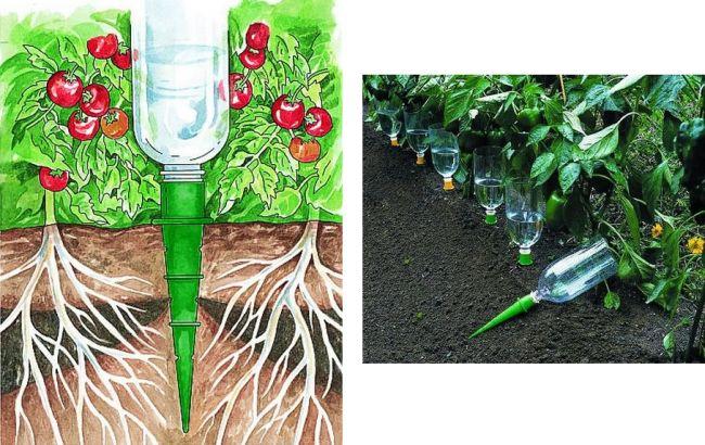 """Автоматический полив """"Аквасоло"""" - это конические насадки на бутылку с резьбой, которые не требуют трат времени на сверление прорезей, вкапывание в землю и так далее"""