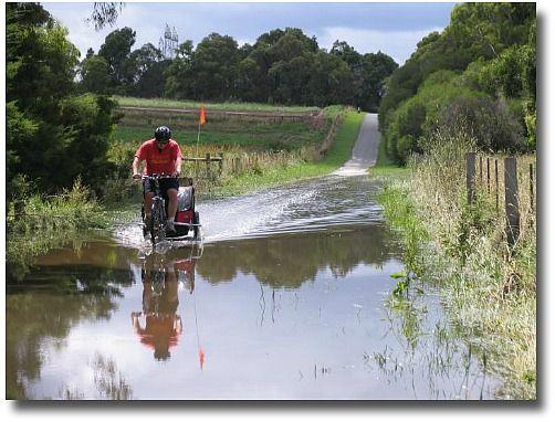 Jells Park Bike Track In Flood December, Melbourne - Australia