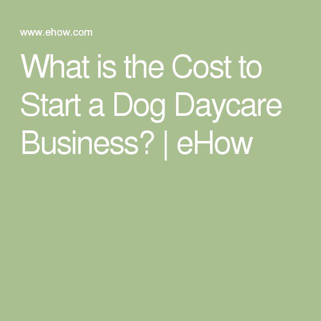 What is the Cost to Start a Dog Daycare Business? | eHow