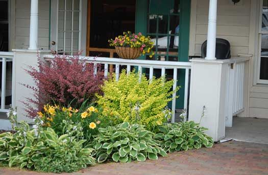 Blowing rock nc basket of flowers shrubs and day lilies for Front porch landscaping plants