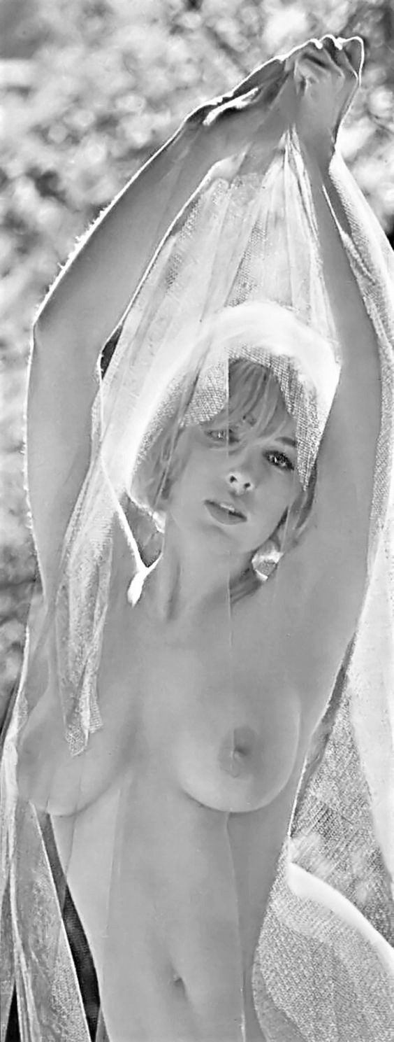 Stella Stevens Pussy Amazing 873 best famous actress , nude in black and white images on pinterest