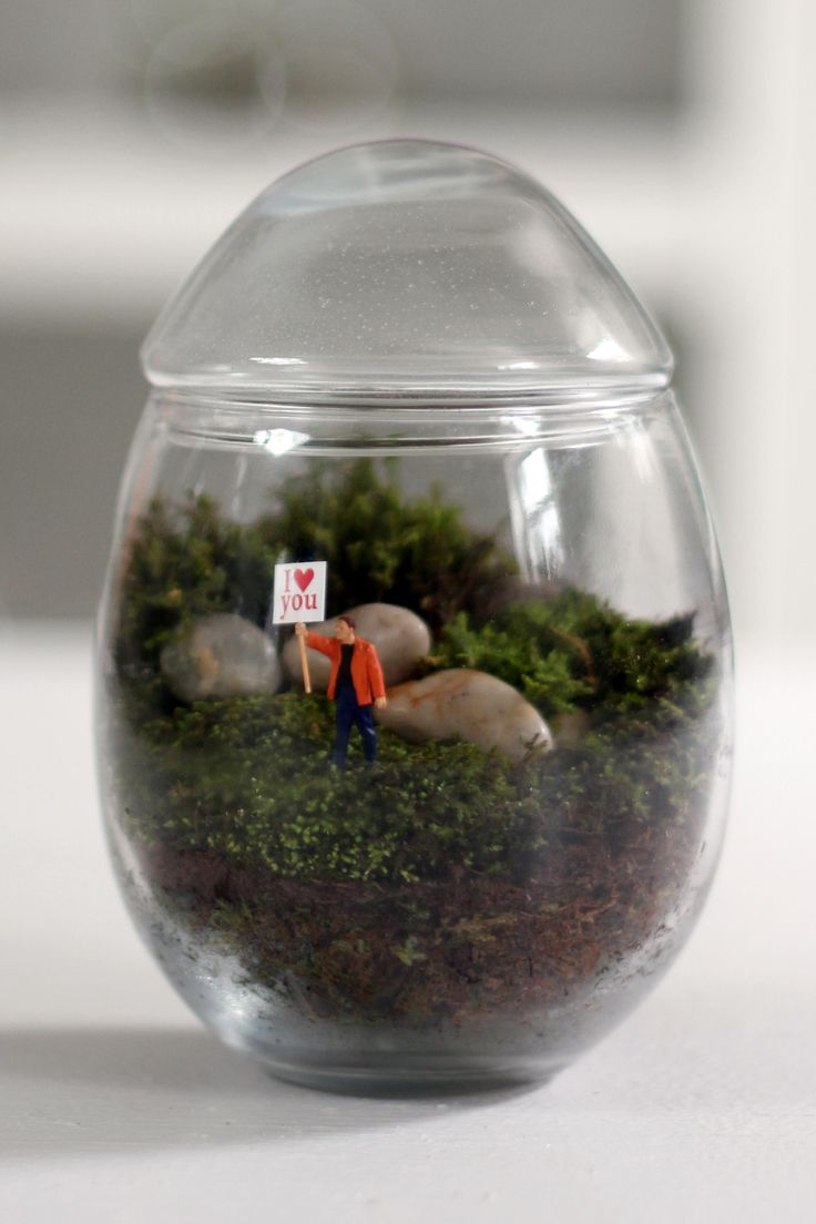 best little gardens images on pinterest miniature gardens
