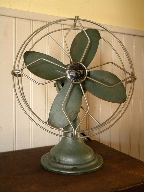 <3 the vintage fan