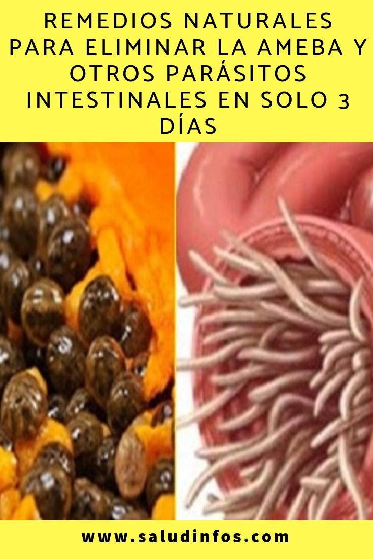 remediu parazit intestinal