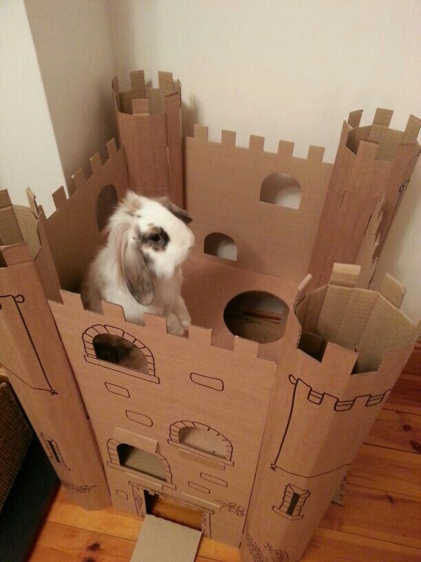how to build a bunny castle out of cardbord