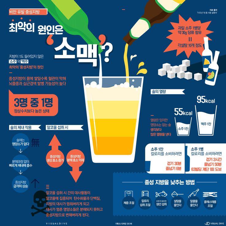 가벼운 소맥 한 잔, 무거운 중성지방 [인포그래픽] #alcohol / #Infographic ⓒ 비주얼다이브 무단 복사·전재·재배포 금지
