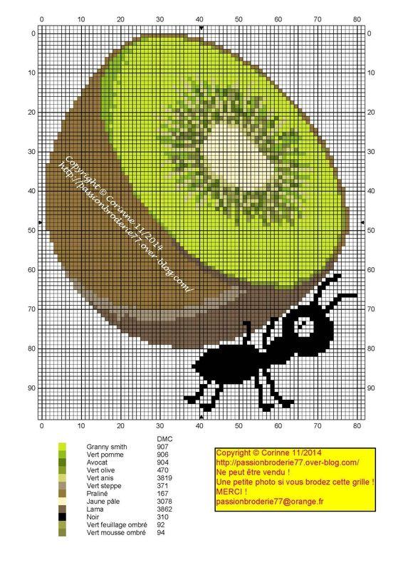 Fourmis kiwi