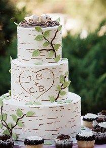 Berkenboom taart