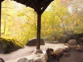 """みなさんは、幸せを呼ぶ温泉があるのをご存知ですか?栃木県那須 塩原温泉にある旅館「松楓楼 松屋」には、""""お湯に浸かると幸せになる""""と言われる温泉があります。しかもこの温泉、泉質自体も凄い!若返りの強い味方、強力な美人の湯なんです。試しに一度入ってみたいという方は、日帰り入浴がオススメ。今回は、露天風呂が最高に気持ちいい「松楓楼 松屋」を、周辺の秘湯情報&ご当地グルメと一緒に、たっぷりご紹介します!"""
