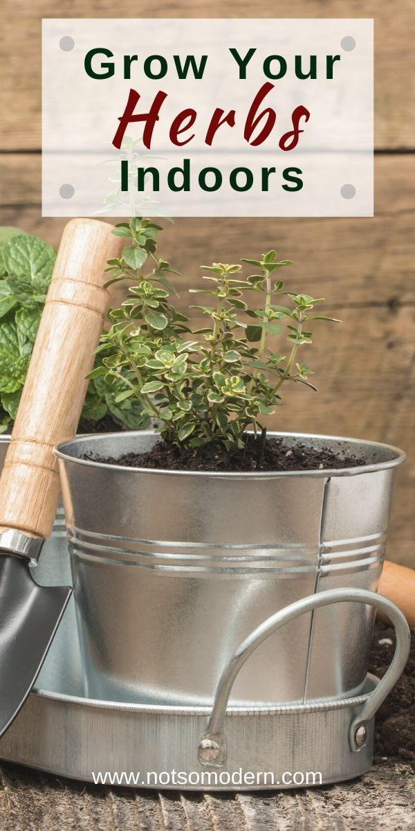 Create A Giftable Indoor Herb Garden Kit In 2020 With Images Indoor Herb Garden Herbs Indoors Garden Kits