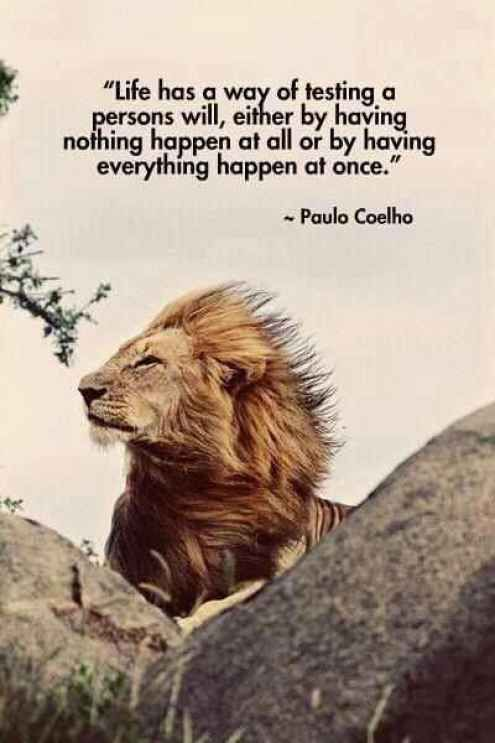 Life has a way of testing a persons will, either by having nothing happen at all or by having everything happen at once. - Paulo Coelho