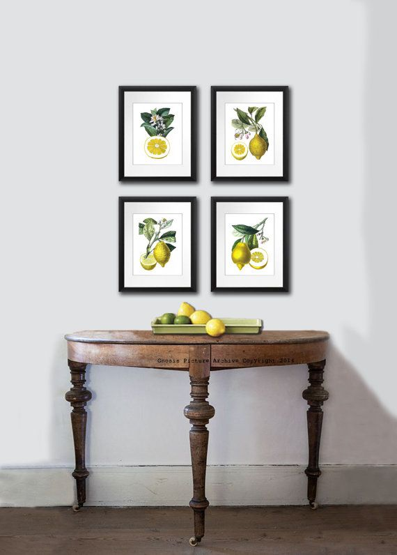 Set Of 4 Vintage Botanical Lemon Citrus Fruit Prints Tropical Summer Decor Wall Hanging Art Dining Room