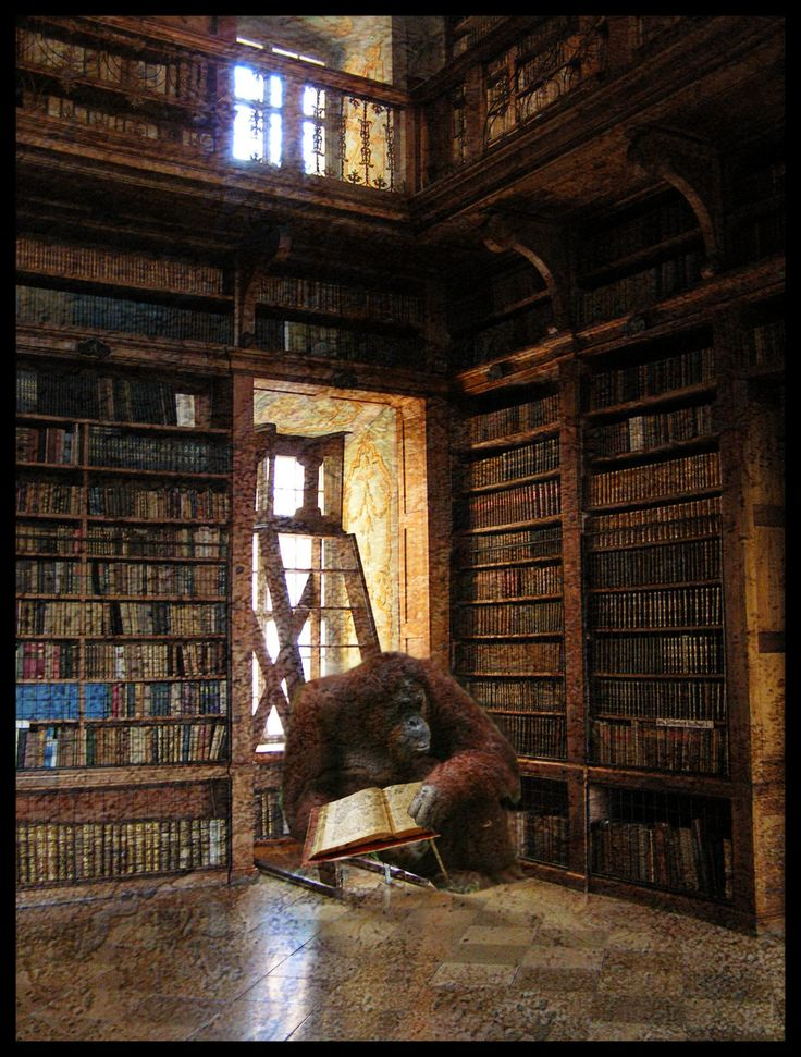 discworld library by Ka-Kind.deviantart.com on @deviantART