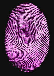 Fingerprints been found?  Charged by the police?  Archbold Legal  NSW, VIC & QLD  www.archboldlegal.com.au  Free call 1800 186 300