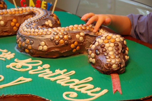 28+ Birthday Cake Snake . Birthday Cake Snake Birthday Snake For Araceli Beautif…  – birthday cake simple