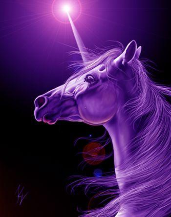 25 best ideas about Purple unicorn on Pinterest  Unicorn facts