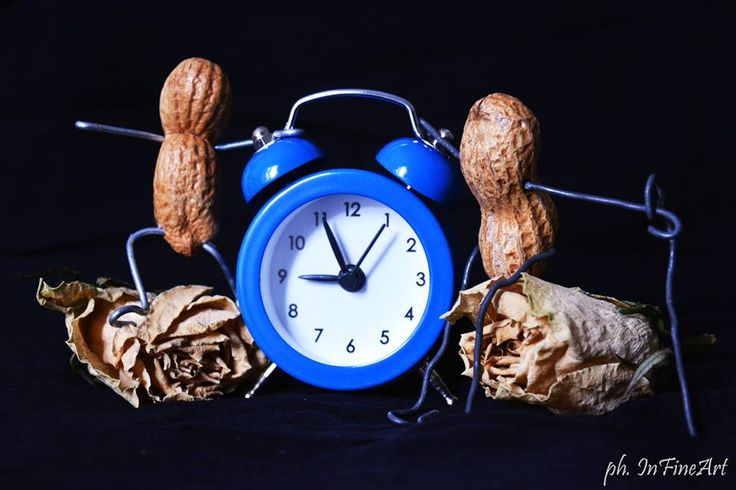 Chi vive intensamente non ha tempo per l'eternità.  Aldo Busi