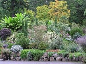 mediterranean garden to build a rock wall to not to build a rock wall - Rock Wall Garden Designs