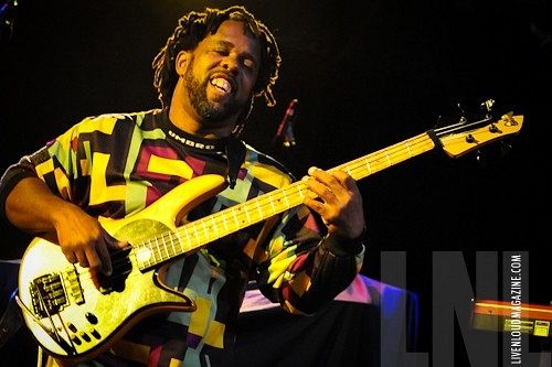 Mi top 5: bajistas / World's best bass players  - By Curioso Impertinente
