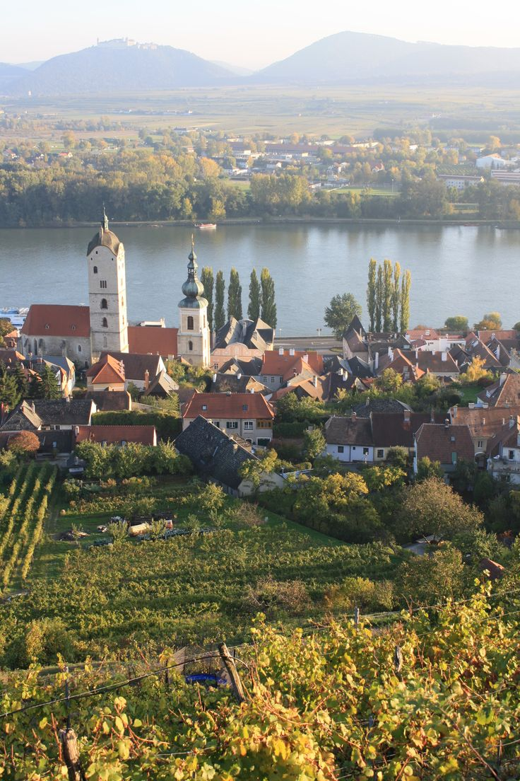 View from the family vineyards above the town of Krems on the Danube River in the Wachau region of Austria. (c) 2012 Gertrud Salomon.