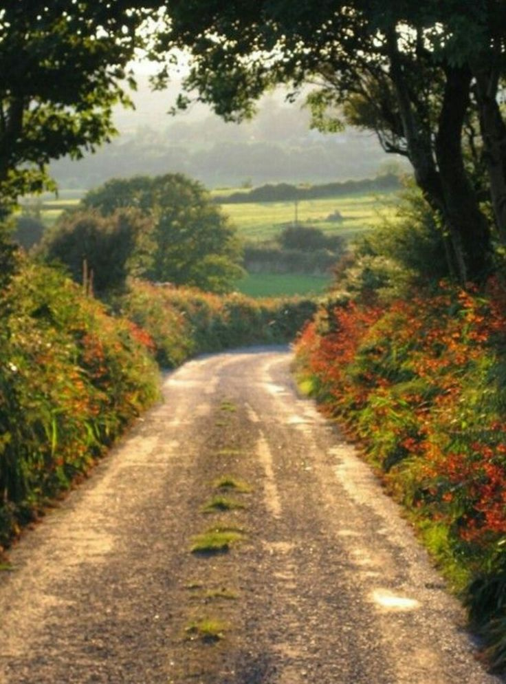 Best 25+ Country roads ideas on Pinterest | Beautiful ...