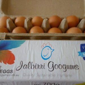 Jalbirri Googums eggs
