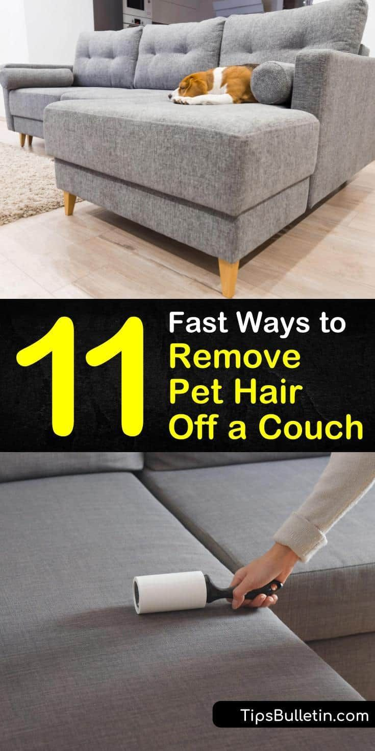 11 Fast Ways To Remove Pet Hair Off A Couch In 2020 Pet Hair Removal Cleaning Pet Hair Pet Hair Removal Furniture